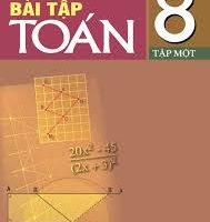 Sách bài tập toán 8 tập 1