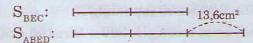 Giải bài tập SGK Toán 5: Luyện tập trang 171