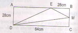 Giải bài tập SGK Toán 5: Luyện tập (tiếp theo) trang 172