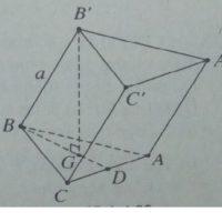 Đề toán tổng hợp – SBT Toán hình lớp 12 Chương 1 khối đa diện
