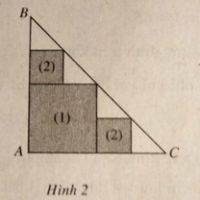 Giải SBT Bài 1. Giới hạn của dãy số – Chương 4 giải tích 11