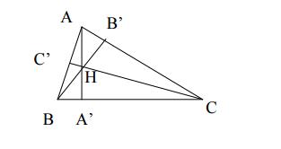 Chuyên đề Phương pháp đại số trong bài toán diện tích đa giác