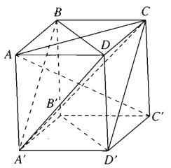 Giải SBT Bài 4. Hai mặt phẳng vuông góc – Chương 3 hình học 11