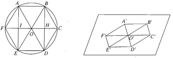 Giải SBT Bài 5. Phép chiếu song song. Hình biểu diễn của một hình không gian chương 2 hình học 11