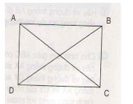 Bài Thực hành vẽ hình chữ nhật