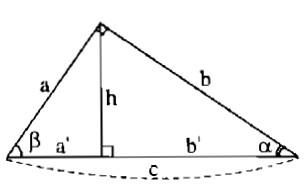 Bài 2 tỉ số lượng giác của góc nhọn – Giải bài 2.1 – 2.10 – Sách bài tập Toán 9 tập 1