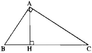 Bài 2 tỉ số lượng giác của góc nhọn - Giải bài 21 - 30 - Sách bài tập Toán 9 tập 1