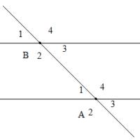 Bài 3 các góc tạo bởi một đường thẳng cắt hai đường thẳng – Chương 1 Hình học SBT Toán 7