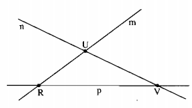 Bài 1 Điểm. Đường thẳng – Chương 1 Hình học SBT Toán 6