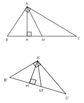 Bài 5: Hai hình bằng nhau – Giải SBT Chương I Hình học 11 nâng cao