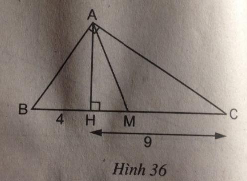 Bài 8: Các trường hợp đồng dạng của tam giác vuông – Chương 3 Hình học SBT Toán 8