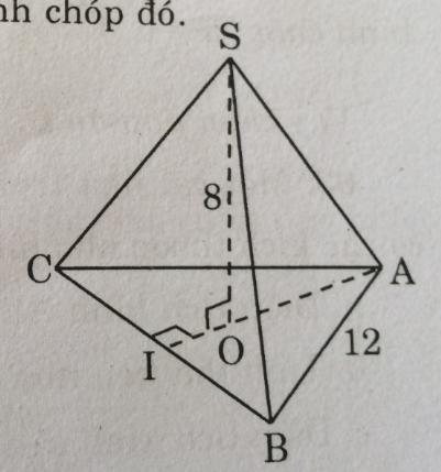 Bài 8: Diện tích xung quanh của hình chóp đều – Chương 4 Hình học SBT Toán 8